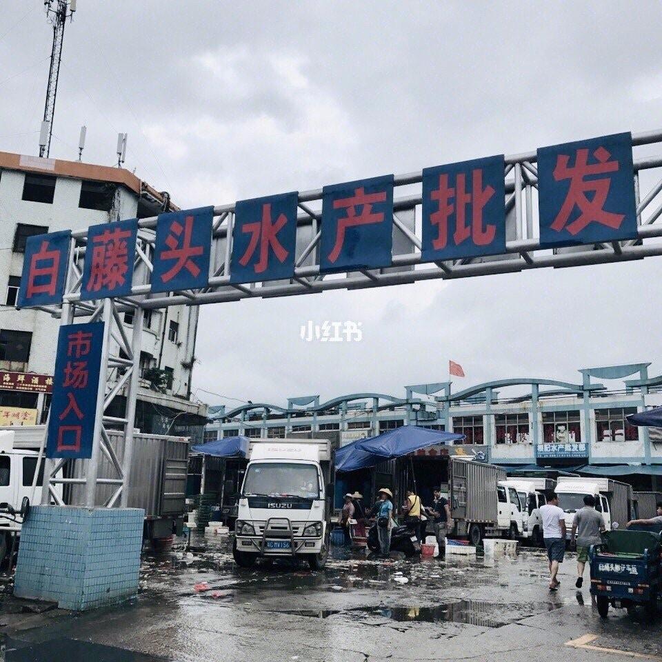 【珠海美食推薦】中國珠海超高CP值海鮮美食!5間當地人力推小店