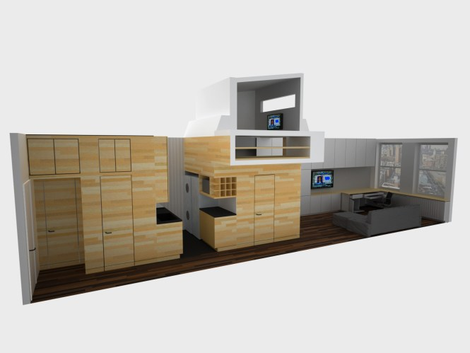 A Schematic Rendering Demonstrates Realistic Plan For This Tiny Apartment
