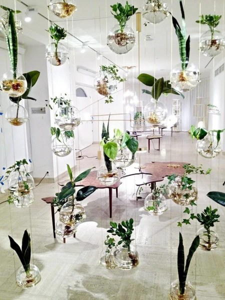 indoor hanging garden ideas Indoor Garden Ideas