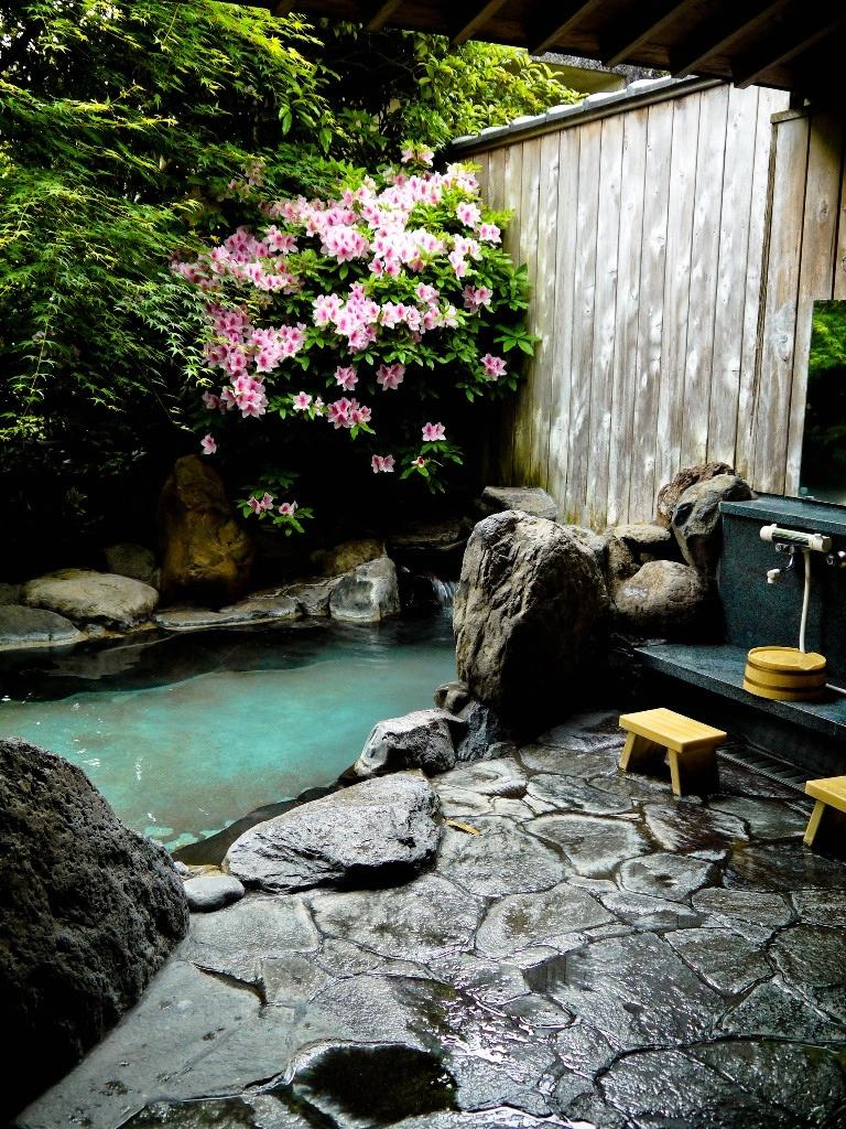 Zen Inspired Interior Design on Zen Backyard Ideas id=73256