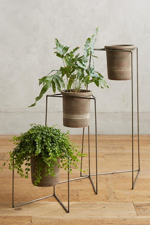 HOME DESIGNING: 42 Unique, Decorative Plant Stands For ... on House Plant Stand Ideas  id=86109