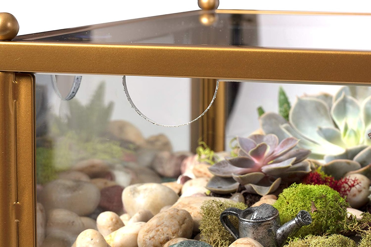 Product Of The Week: A Side Table With Built-in Terrarium