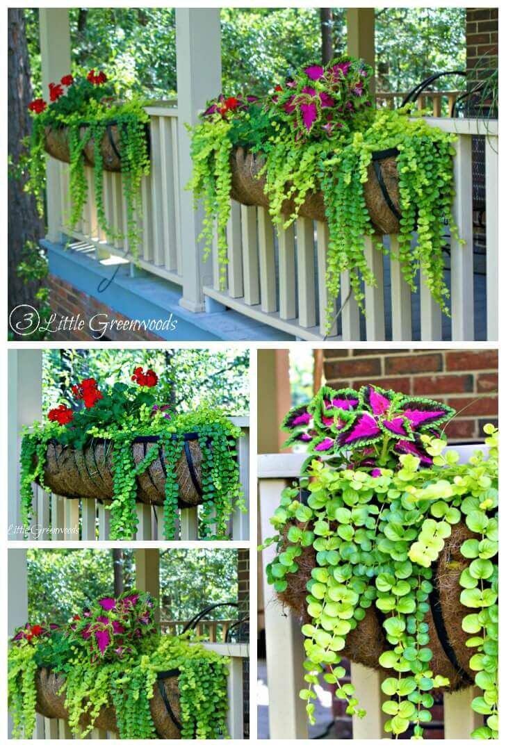 45 Best Outdoor Hanging Planter Ideas and Designs for 2017 on Plant Hanging Ideas  id=18829