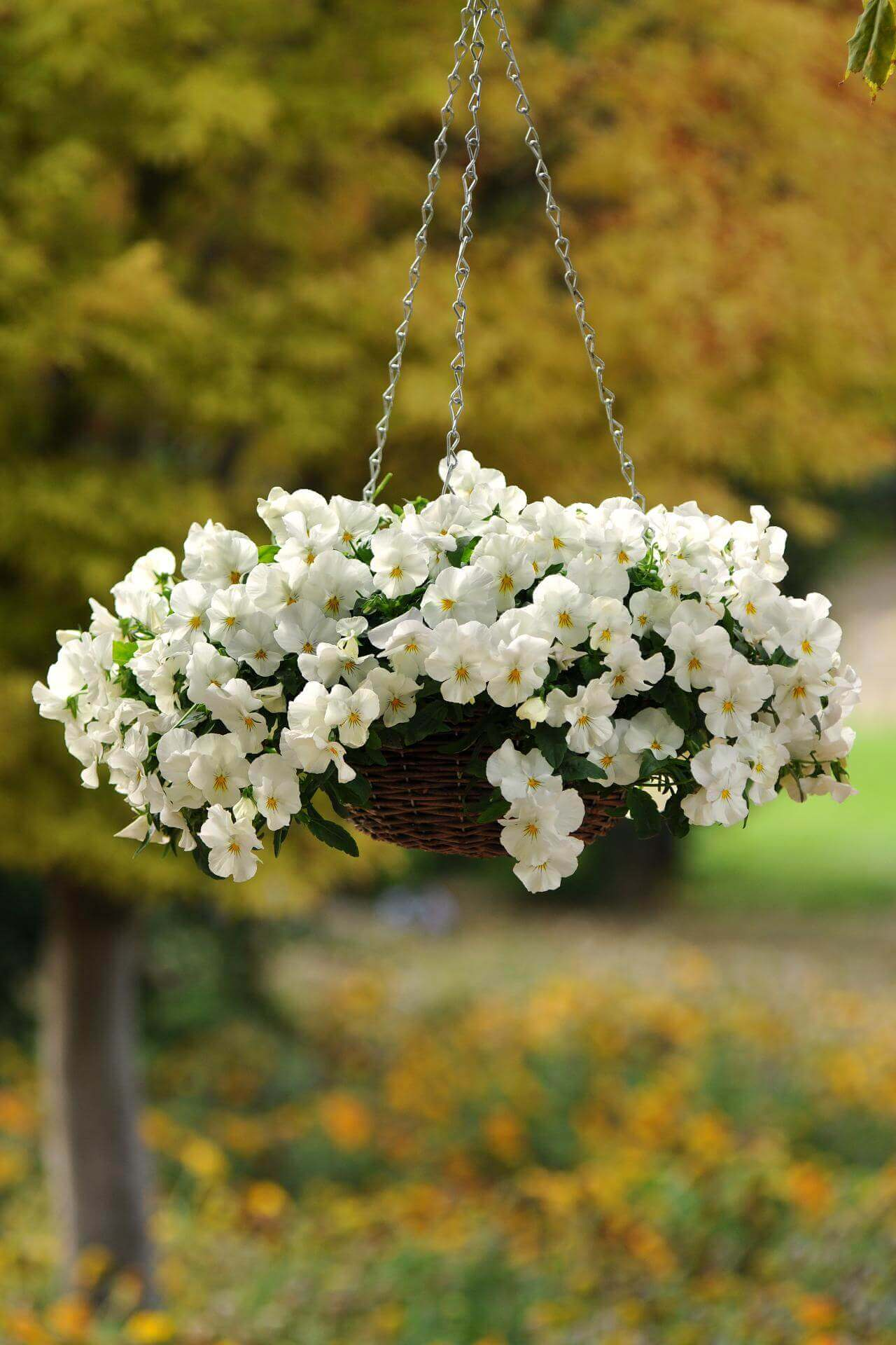 45 Best Outdoor Hanging Planter Ideas and Designs for 2017 on Hanging Plants Ideas  id=20994