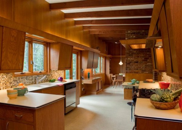 pictures of mid century modern kitchens