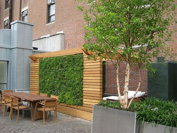 il giardino verticale per gli spazi ristretti | guida giardino - Piante Per Giardini Verticali