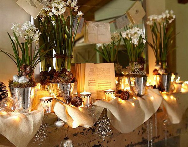 Creative indoor plants decors for Christmas   New Year View in gallery