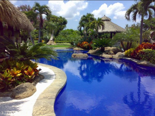 Create your own tropical garden on Tropical Backyards  id=76434