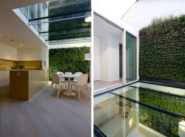 Contemporary Interior With A Glass Floor And A Vertical Garden