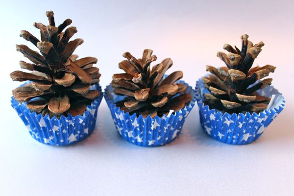 12 DIY Pinecone Crafts Perfect To Keep You Busy On A