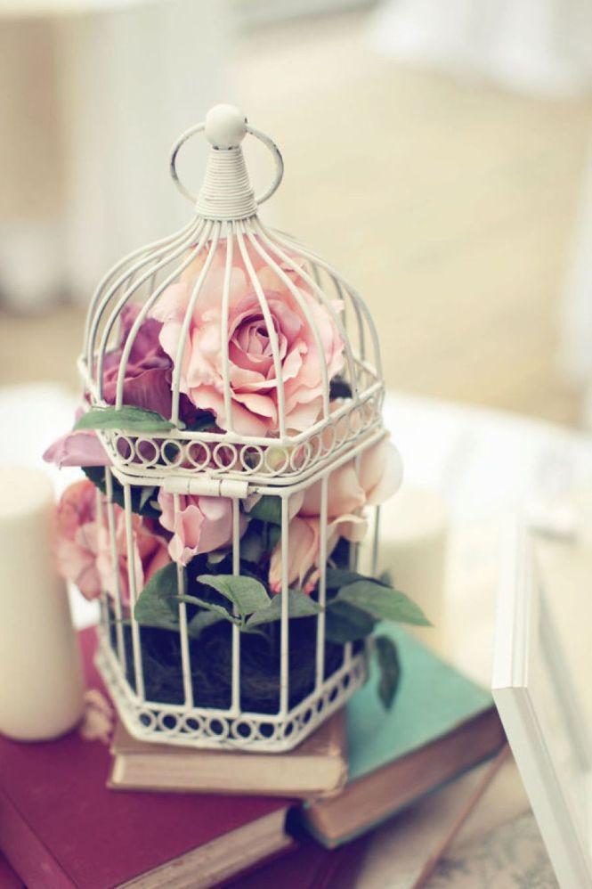 Bird Cage Decor Lushlee
