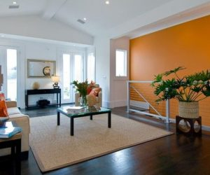 Astonishing Living Room Ideas With Modern Brown Wall Color Design Also