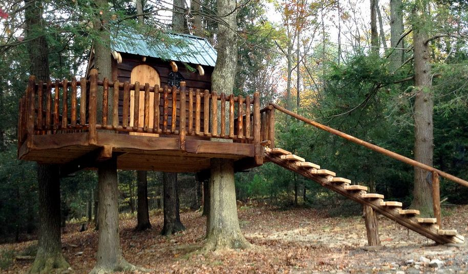 Image Result For Set Of Stairs In The Woods