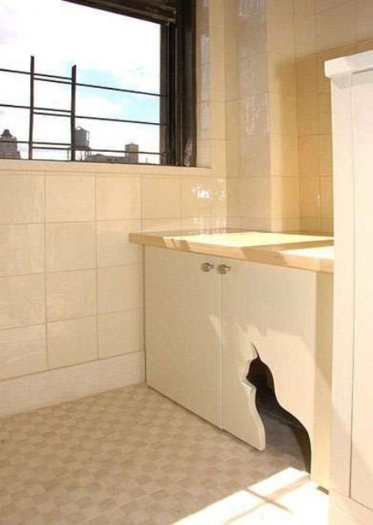 Top 10 Ingenious Ways To Hide Your Cat S Litter Box