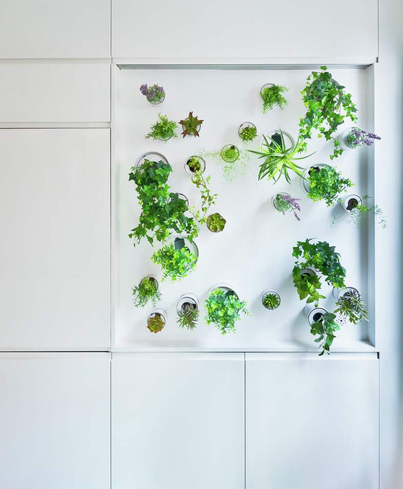 Redesigned Paris apartment kitchen vertical garden