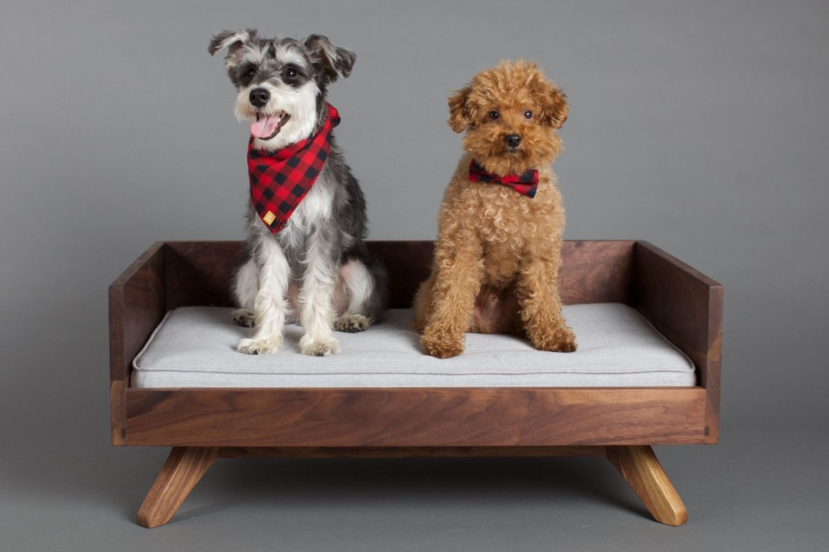 Stylish Dog Beds For Pets With Class
