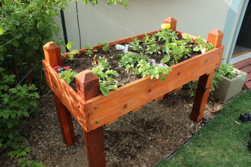 DIY Raised Flower Box Project for Backyard