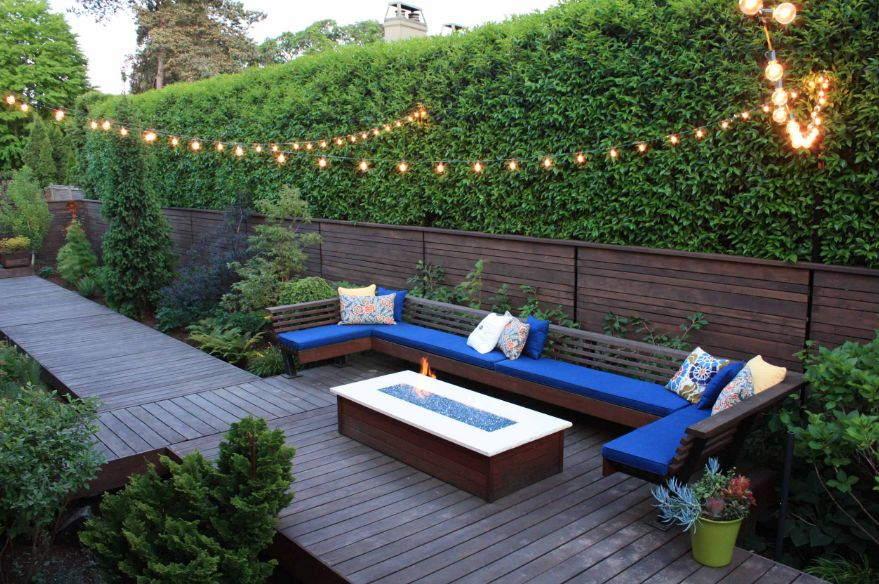 unique particularities of privacy plants