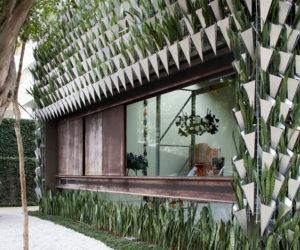 Superlimao studio green facade