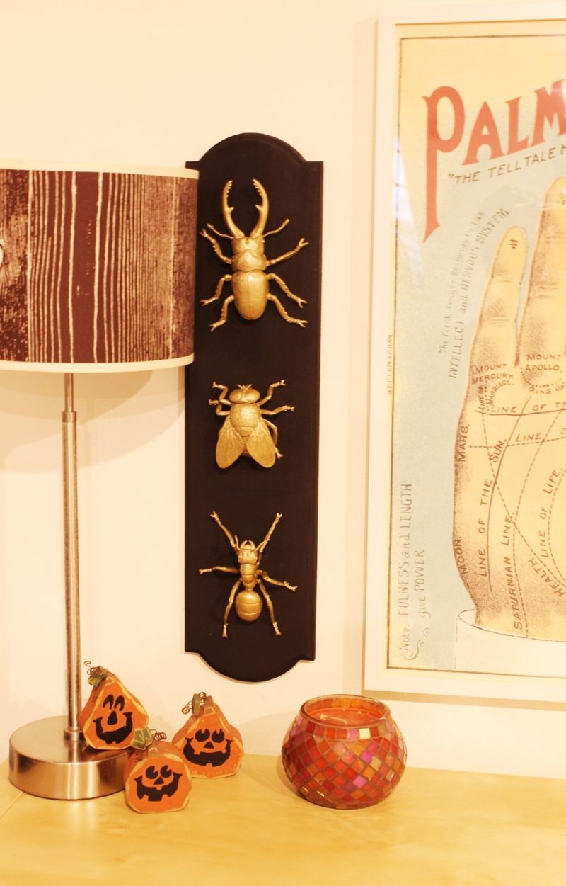 DIY Insect Taxidermy - a touch of glam for Halloween