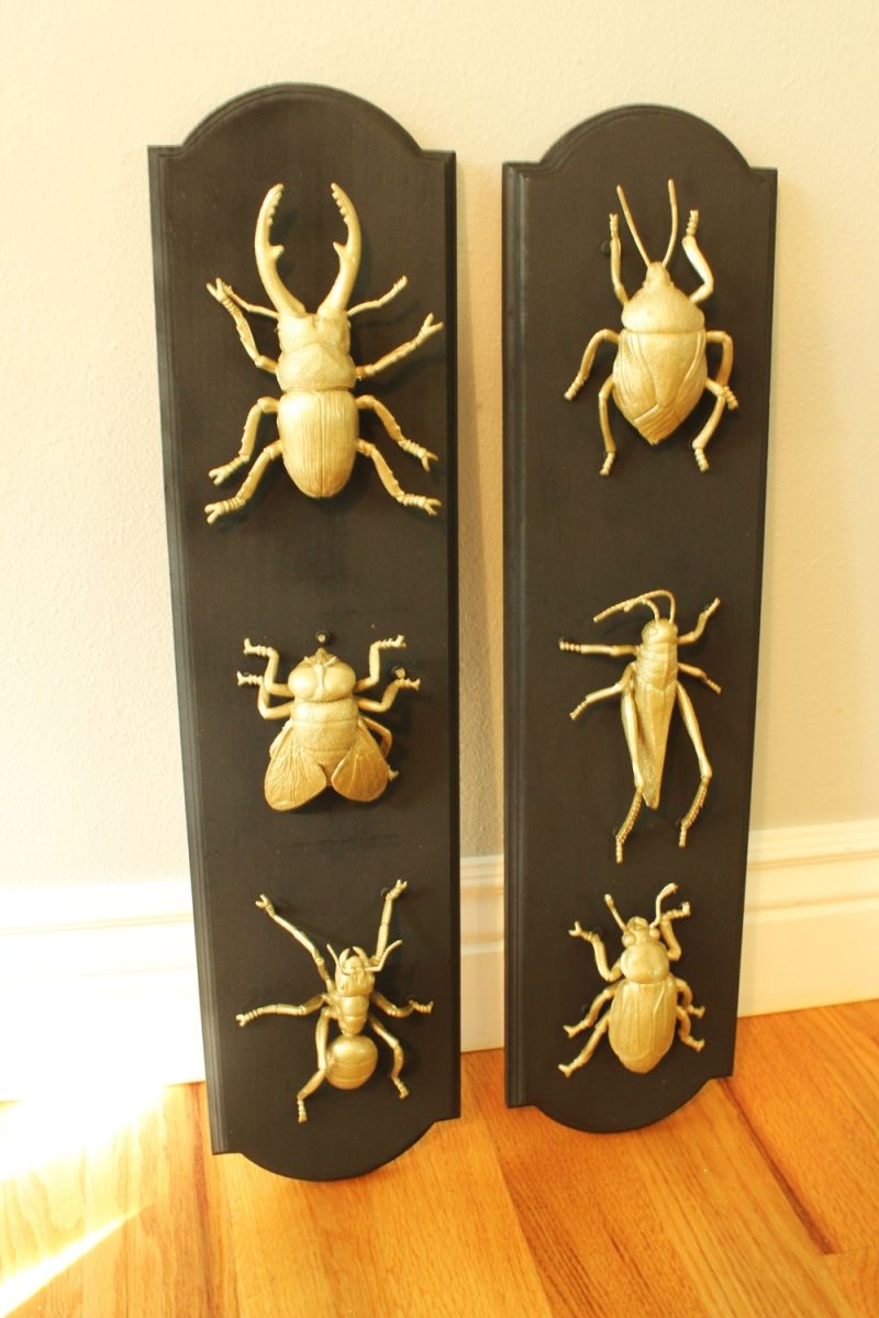 DIY Insect Taxidermy for Halloween