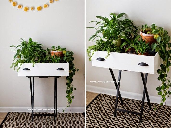 DIY drawer plant stand