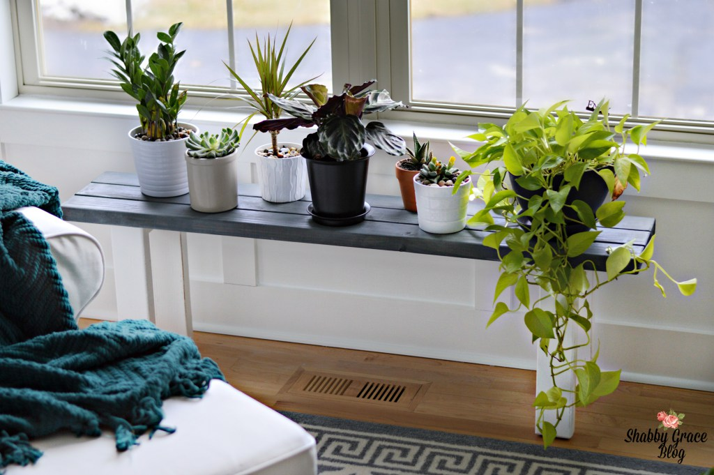 DIY plant stand bench