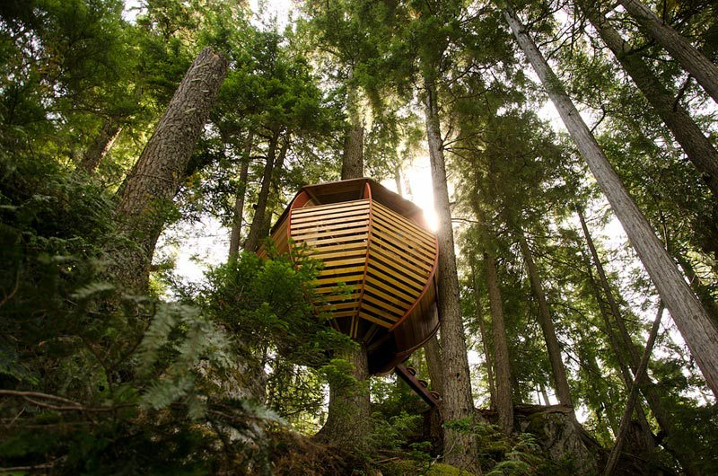 Design Hemloft treehouse in the woods