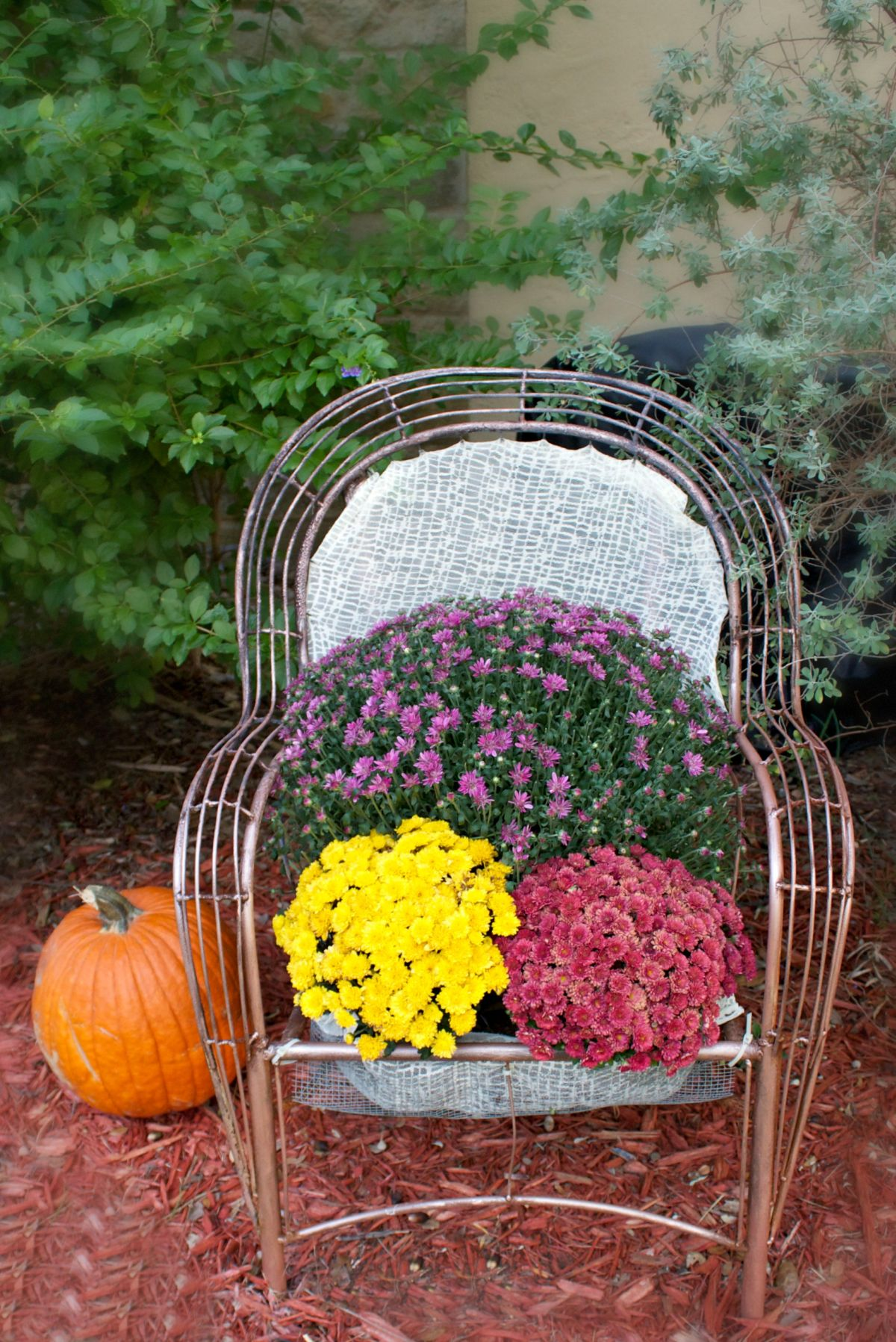 Turn a Chair into a Garden Bed DIY