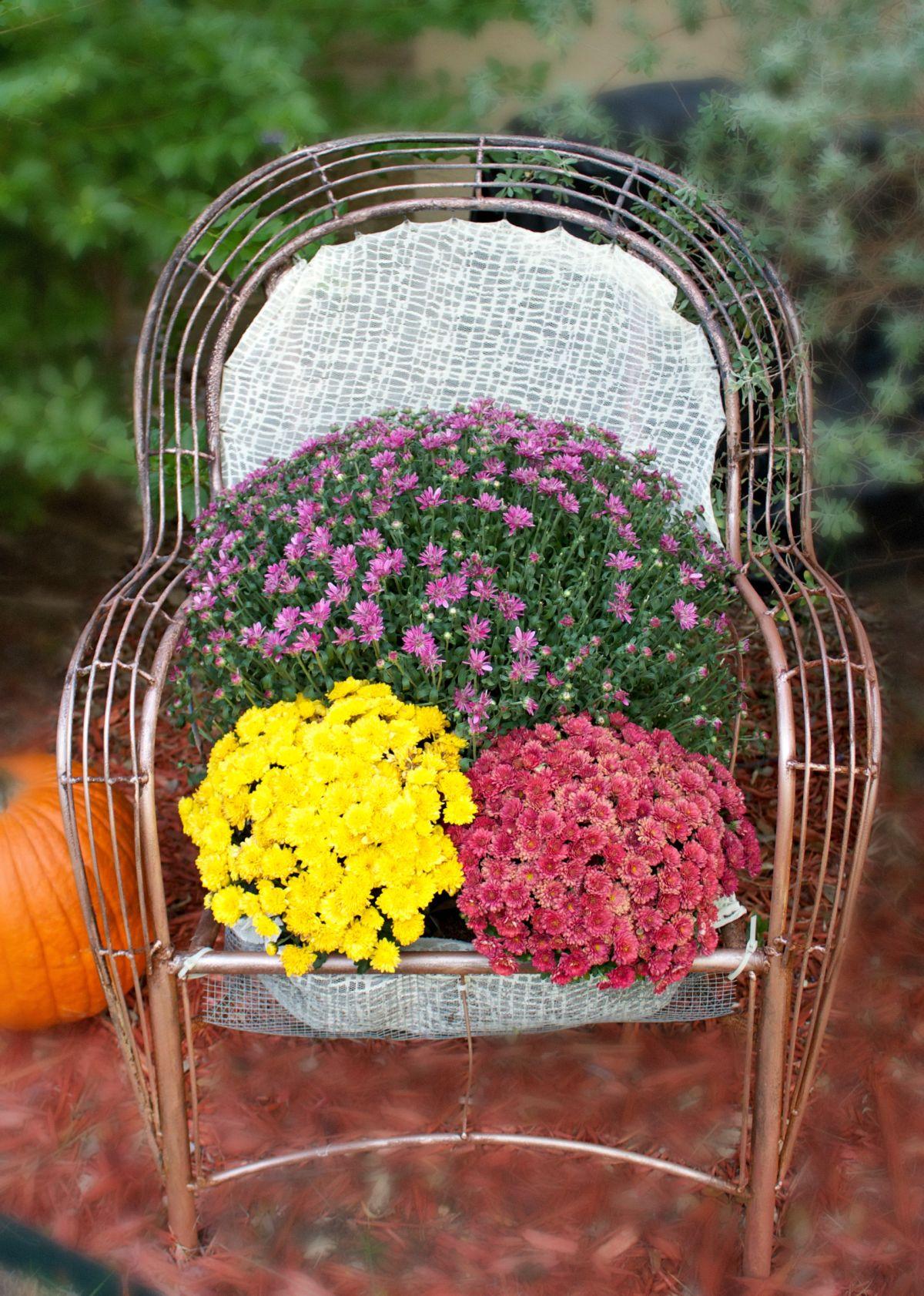 Turn a Chair into a Garden Bed -Decor for Garden