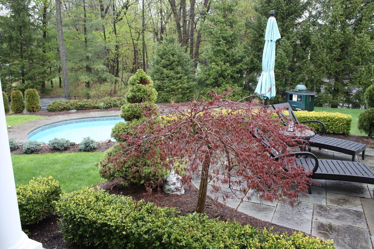 Pool area curb appeal design