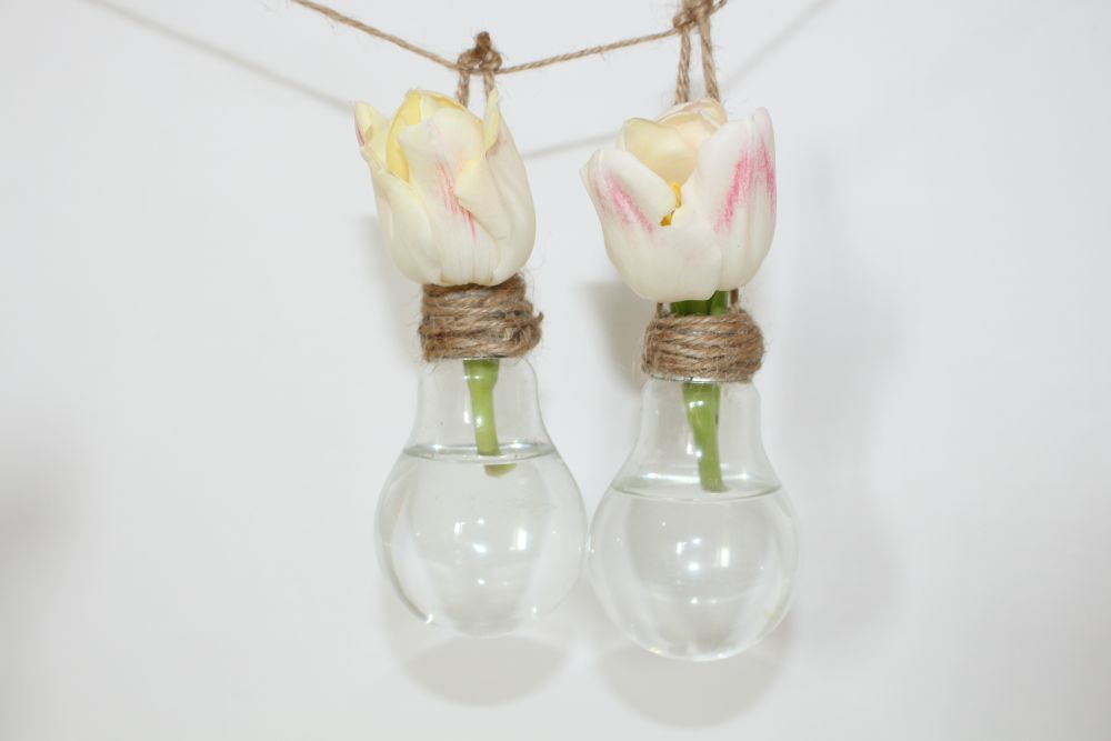 Two Bulb Pendant Light