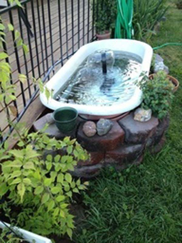 21+ Small Garden Backyard Aquariums Ideas That Will ... on Small Backyard Pond  id=79391