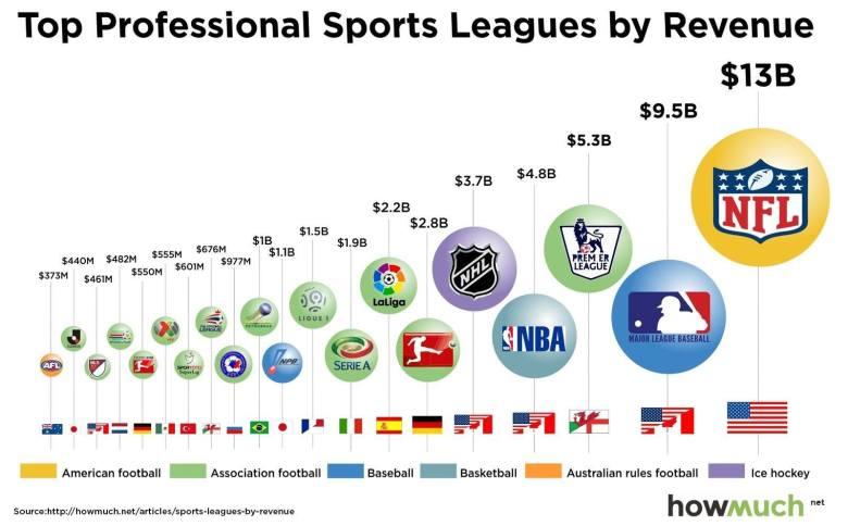 Top Professional Sports Leagues by Revenue