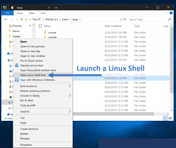 WSL for Windows 10 October 2018 Update Version 1803 Details
