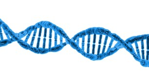 DNA Microscopic Cell Gene Helix
