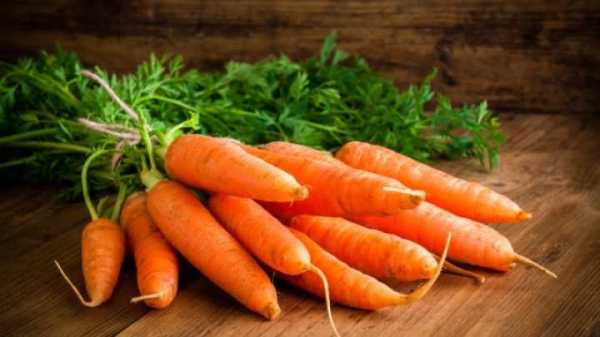 Scientists Have Discovered Why Carrots Are Orange IFLScience