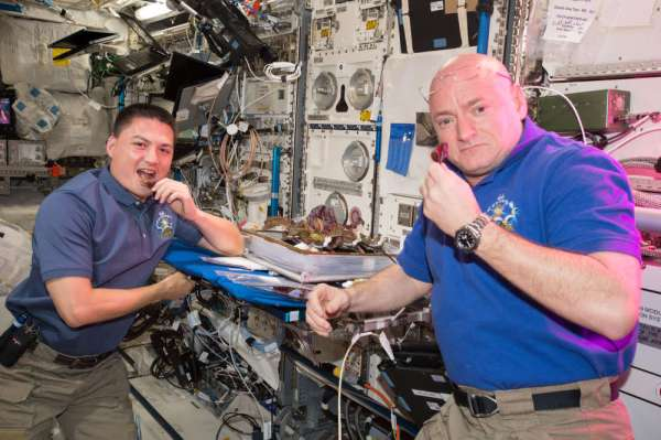 Lettuce Grown On The ISS Is As Safe To Eat As Earth-Grown ...