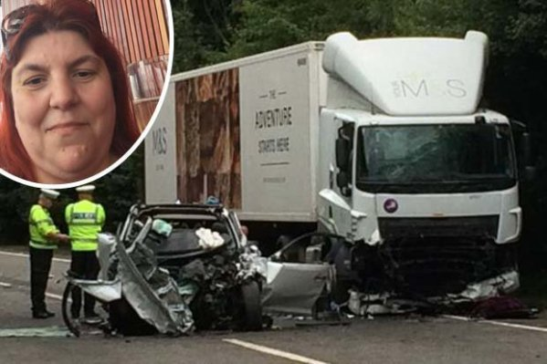 Devon crash: First pic of mum killed with twins in ...