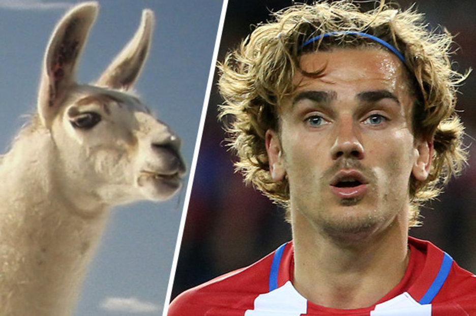 Man Utd Target Antoine Griezmann Gets New Hairdo But