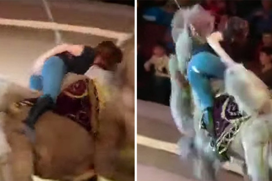 Girl Suffers Wardrobe Malfunction After Maverick Camel