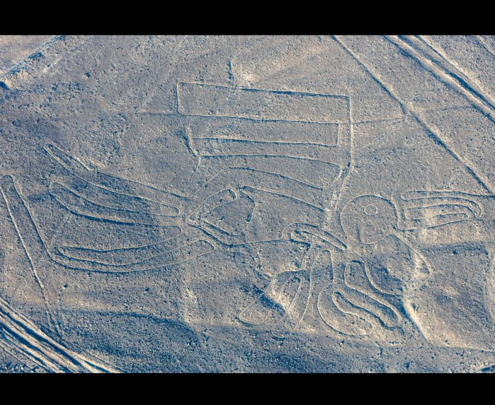 'The Pelican' is etched in shallow lines on the desert floor