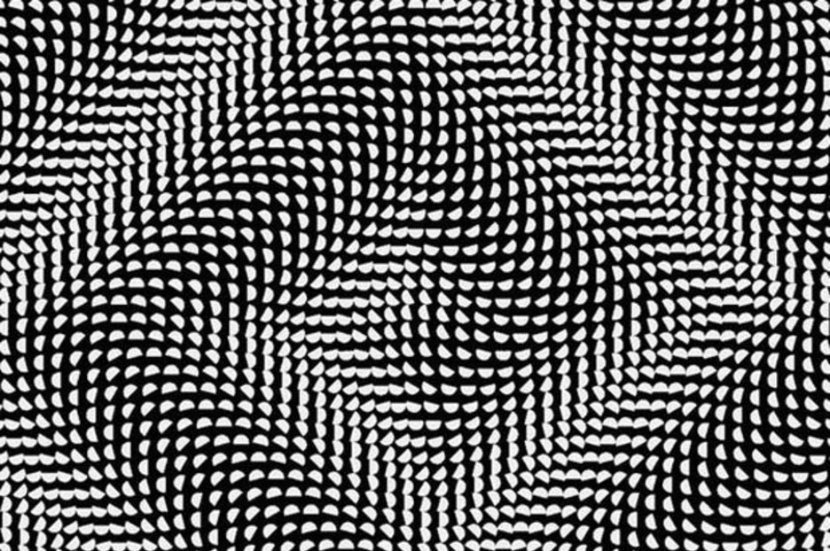 Optical illusion Something happens when people stare at