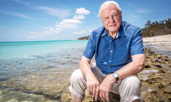 The public ignored David Attenborough on plastic