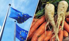 Image result for Brexit hurts UK Vegetable, fruit farmers