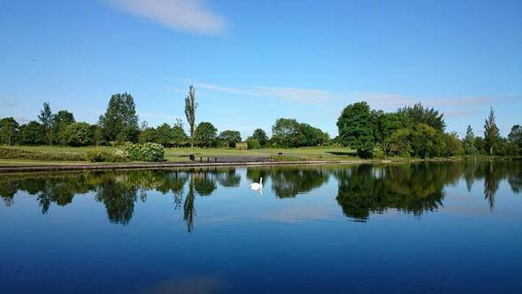 Lake and a park