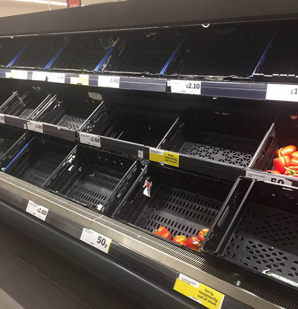 Tesco vegetable shelves out of stock
