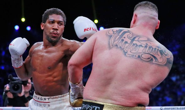 Anthony Joshua hailed for 'business execution' over Andy Ruiz Jr in rematch