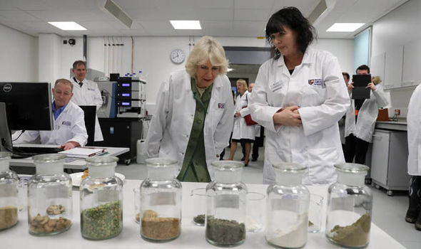 Camilla at the University of Aberdeen lab
