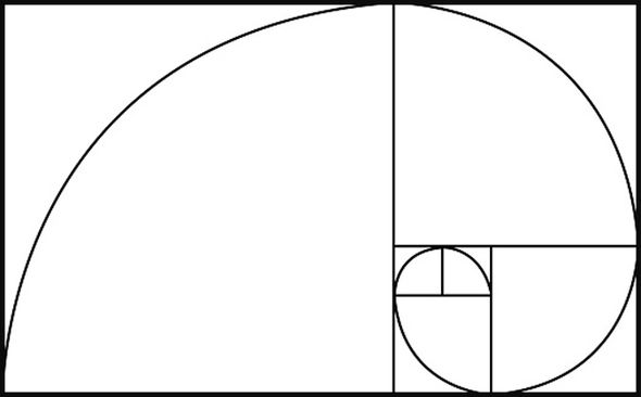 Image result for fibonacci